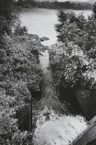 新潟県立環境と人間のふれあい館1排水口